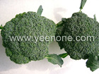 28-32 pcs broccoli