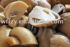 chinese wild canned mushroom