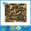 Dried Morehella Esculenta