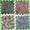 pebble tile/stone tile/pebble stone tile