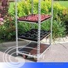 metal plant trolley