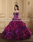 2010 New Style Quinceanera Dress