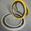 Standard Spiral Wound Gasket(Spot goods)