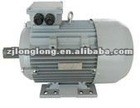 Hot Sales YE2 Series Three Phase Electric Motor