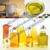 mini type oil press /oil mill/oil expeller for family use 0086-15838059105