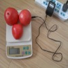 Portable digital Electronic compact scale