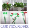 Environment friendly flowerpot from China