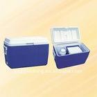 small Car Cooler Box/Fridge Manufacturer