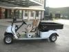 Golf Car EG2048HCX