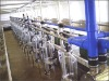 Stainless steel material Mid Placement type Milking Machine
