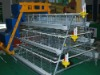 chicken cage factory for chicken farm