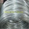 High Quality 3.00mm Diameter Galvanized Steel Wire (manufacturer)