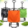 2012 hot selling foldable beautiful single-shopping trolley bags