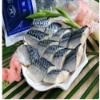 Frozen Scomber Japonicus Mackerel Fillets
