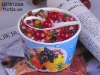 2011 Lovely design Ice cream saving box QT1012206