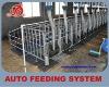 New design automatic chian feeding system
