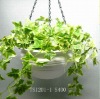 Ceramic Garden Decorative Flower Hanging Pot