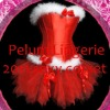wholesale corset costume,Santa corset,holiday corset