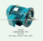 SM series three-phase induction motors (B35)