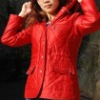 Ladies Winter Garment---DY0003
