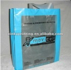 PVC handle bag for clothing