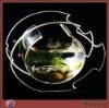 Transparent Fish-Shaped High Grade Acrylic Fish Tank