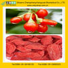 Nutrious wolfberry from GMP Manufacture