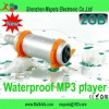 New 2GB Waterproof Underwater Sport Swimming MP3 Player With FM