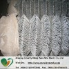 Anping PVC coated galvanized garden protection factory