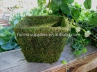 moss covered pots