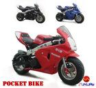 Pocket Bike/Mini Bike/Gas Scooter