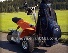 Electric Golf Trike1000W motor