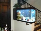 Extra White Glass Aquarium
