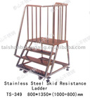 304 or 316L Stainless Steel Ladder