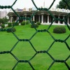coated chicken wire mesh