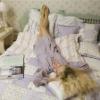Qulits Bedspresds/Bed Cover