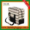 2012 best selling stylish picnic bag