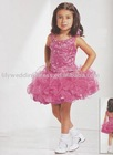 Flower Girl's Party Dress