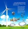 Wind Turbine Pitch Bearing
