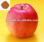 apple extract manufacturer