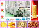 fried peanut production line (manufacturer)