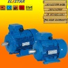 Copper Wire MS Series Three Phase Asynchronous Electric Motor