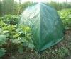 Garden plant cover