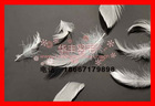 10%washed white duck feather 10/90