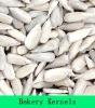 Bakery sunflower seeds kernels