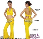 2012 Belly dance costume wear 2pcs set Top+pants Many colors 82211114416