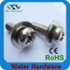 Stainless Steel Screw with washer