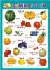 kids PVC fruit learning wall growth charts