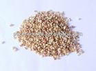 Rhizoma Fagopyri Dibotryis Extract