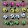 colorful plastick ladybird back with sticker
